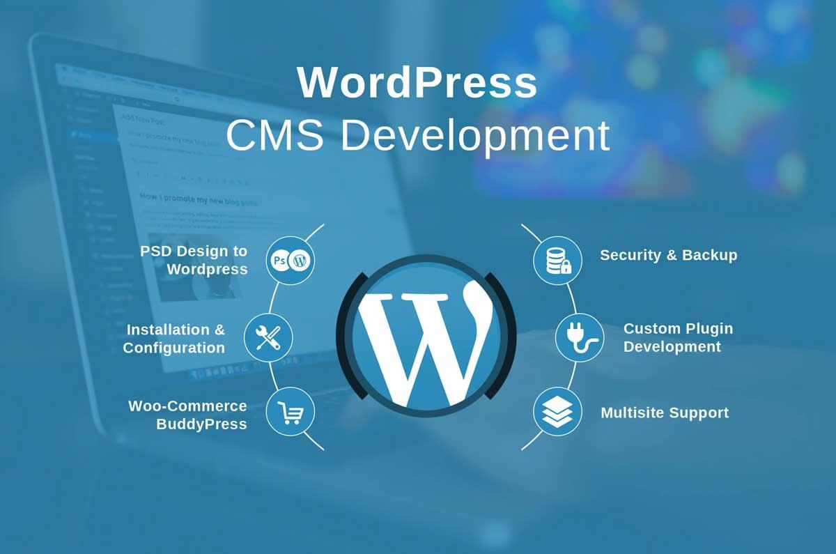 WordPress Development hình ảnh 1