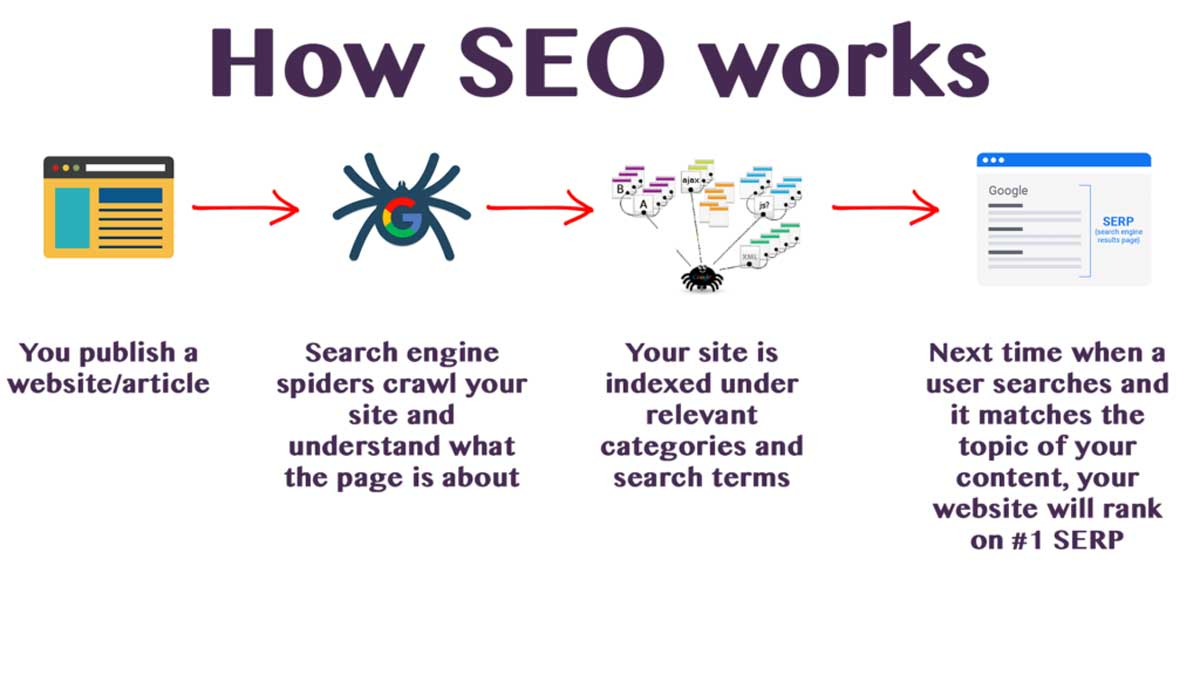 Complete Guide to SEO: What is SEO & How it Works in 2021? hình ảnh 2