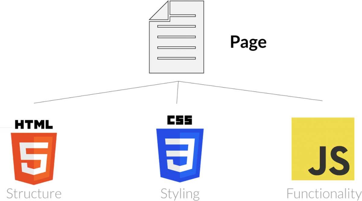 HTML là gì? Giải thích chi tiết từ A-Z về HTML! hình ảnh 4